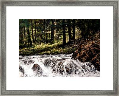 Lucia Falls In July Framed Print