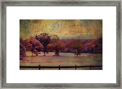 Lucid Ehereal Dream Framed Print