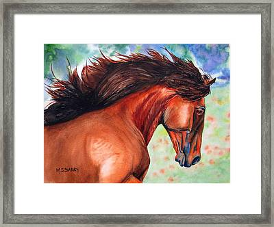 Lucitano Framed Print by Maria Barry