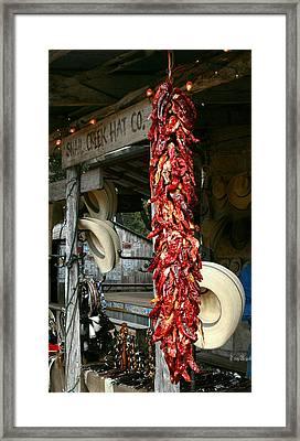 Luckenbach Texas Framed Print by Terry Burgess
