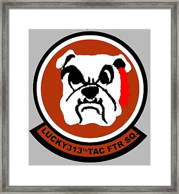 Lucky 313th Tac Ftr Sq Framed Print