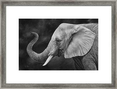 Lucky - Black And White Framed Print by Lucie Bilodeau