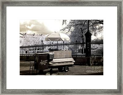Lucky Day For Lucky Dogs Infrared Framed Print