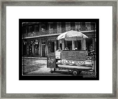 Lucky Dog Framed Print by Jeanne  Woods
