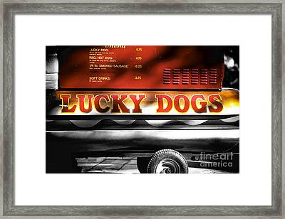 Lucky Dogs Fusion Framed Print