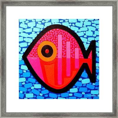 Lucky Fish IIi Framed Print by John  Nolan