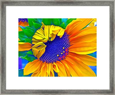Lucky Framed Print by Gwyn Newcombe