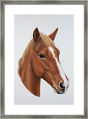 Lucky Framed Print by Lucy Deane