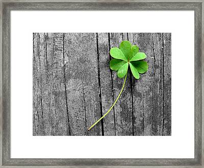 Lucky Framed Print by Shannon Blanchard