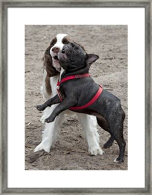 Lucy And George Framed Print