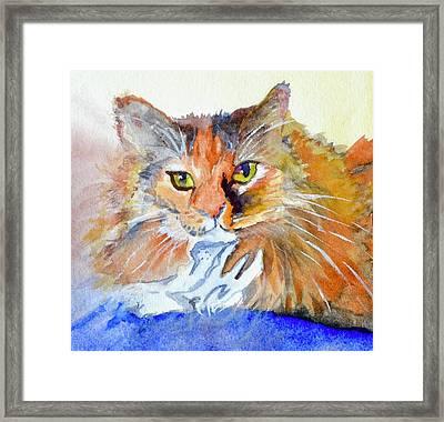 Lucy Framed Print by Beverley Harper Tinsley