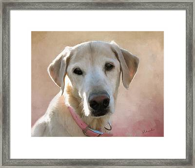 Lucy In Pink Framed Print