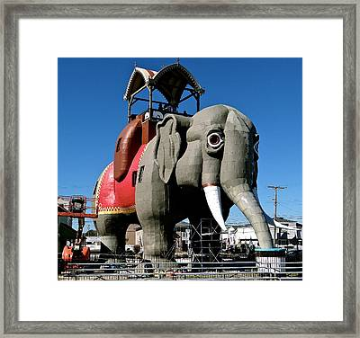 Lucy The Elephant Framed Print by Ira Shander