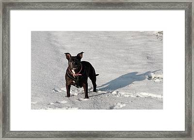 Lucy Winter Framed Print