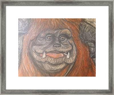 Ludo Framed Print