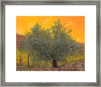 L'ulivo Tra Le Vigne Framed Print by Guido Borelli