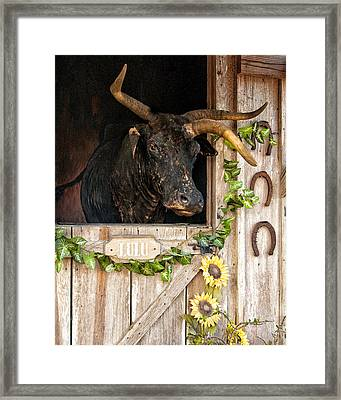 Lulu The Three-horned Cracker Cow Framed Print by Mitch Spence