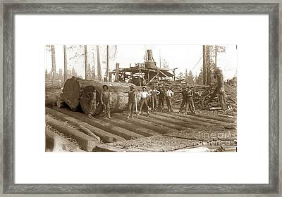 lumberjack with Redwood logs and steam donkey circa 1900 Framed Print by California Views Mr Pat Hathaway Archives
