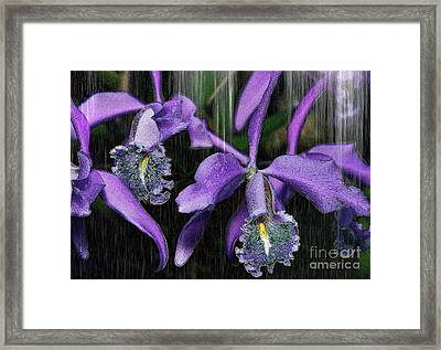 Luminessence Framed Print