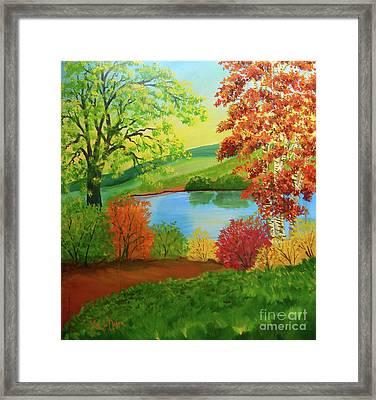 Luminous Colors Of Fall Framed Print