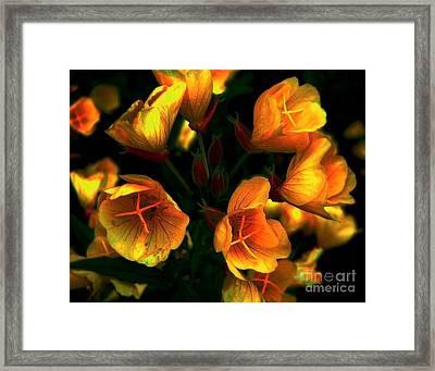 Framed Print featuring the photograph Luminous by Elfriede Fulda