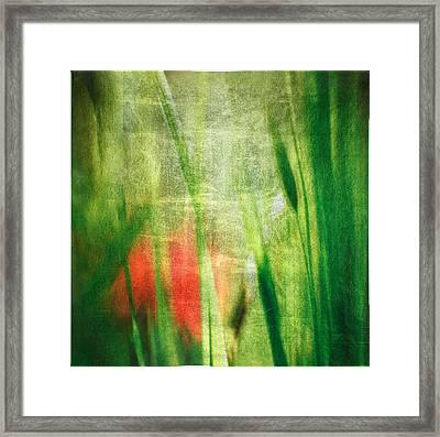 Luminous Grasses #6071 Framed Print