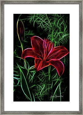 Luminous Lily Framed Print