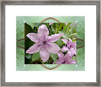 Framed Print featuring the photograph Luminous Mauve by Bell And Todd