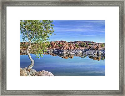 Lumps Bumps And Curves Framed Print by Donna Kennedy