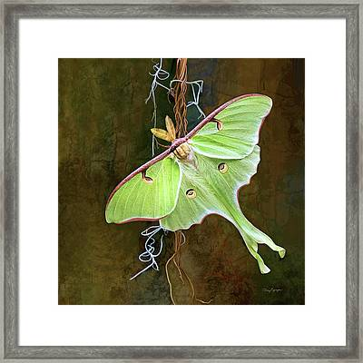 Framed Print featuring the digital art Luna Moth by Thanh Thuy Nguyen