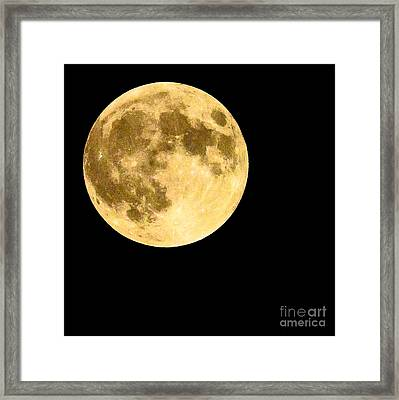 Lunar Close Up Framed Print by Sandy Molinaro