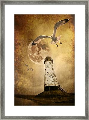 Lunar Flight Framed Print by Meirion Matthias