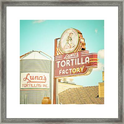 Luna's Silo And Sign Framed Print by David Waldo