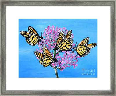 Butterfly Feeding Frenzy Framed Print