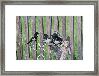 Lunch In The Garden Framed Print by Alana Thrower