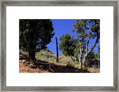 Lunch Spot Framed Print