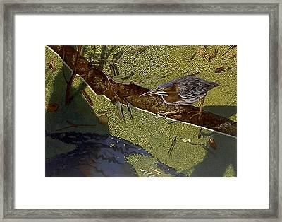 Lunch Time Framed Print by Peter Muzyka