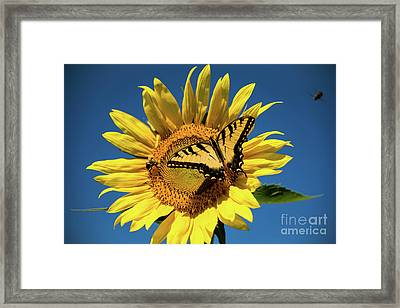 Lunch With Friends Framed Print