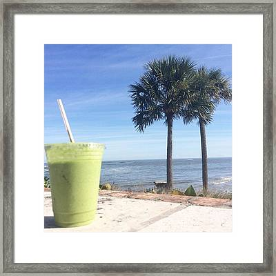 Lunching It Over A Pressed Green Framed Print