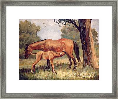 Lunchtime   Mare And Foal Framed Print by JoAnne Corpany