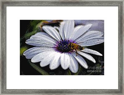 Lunchtime  Framed Print by Juls Adams