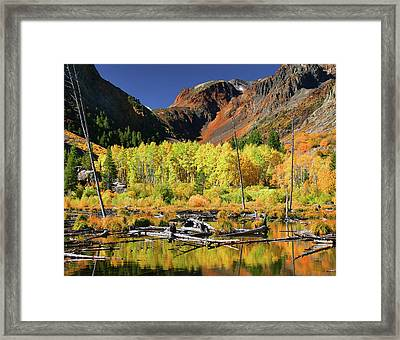 Lundy Canyon Beaver Pond Framed Print by Tom Kidd