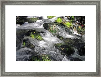 Lundy Creek 2 Framed Print
