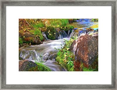 Lundy Creek Framed Print