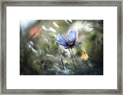 L'unification Des Interactions Framed Print
