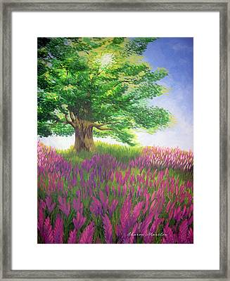 Lupine Afternoon Framed Print by Sharon Marcella Marston