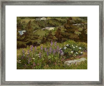 Lupine And Wild Roses Framed Print