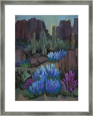 Lupine In Bloom At Boyce Thompson Arboretum Framed Print by Diane McClary