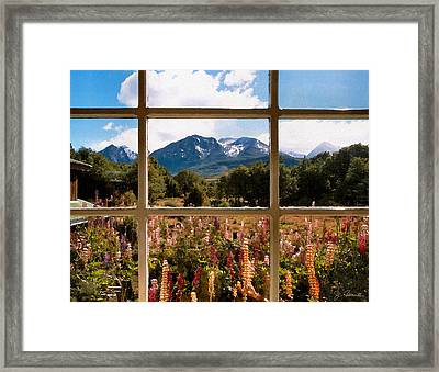 Lupines And Mountains Framed Print by Joe Bonita