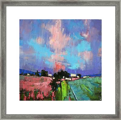 Lupines Color Framed Print by Anastasija Kraineva
